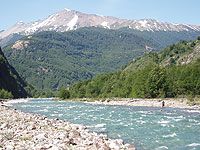 Norm Crisp's Feature Article - Fly Fishing in Chile, 2010