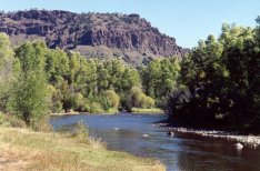 Fly fishing in Wyoming's Battle Creek with Stream Side Adventures